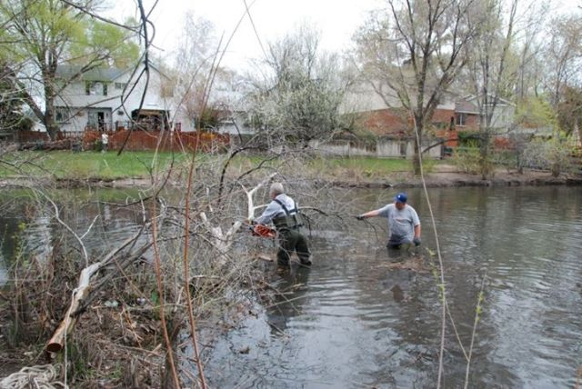 Pond Cleanup